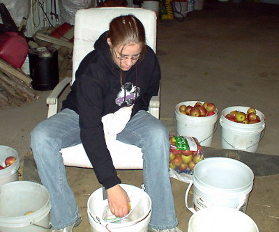 Grandaughter Liz helps sort apples.